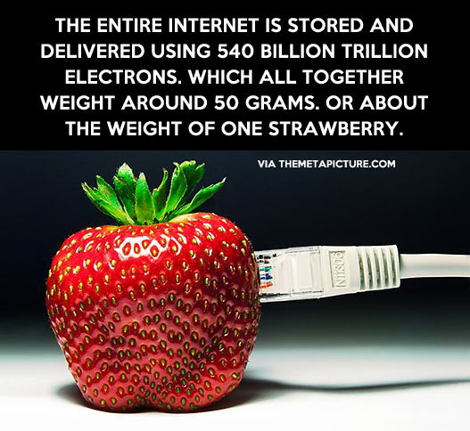 The whole Internet in one strawberry…