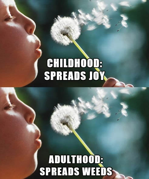Childhood and adulthood…