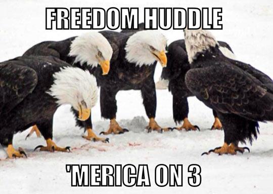 Freedom huddle…