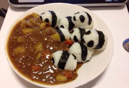 Panda Curry Bum-Rush…