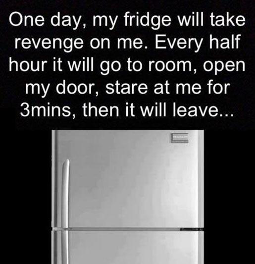 The fridge revenge…
