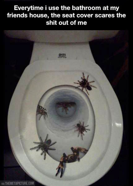 funny-friend-toilet-seat-cover-spider