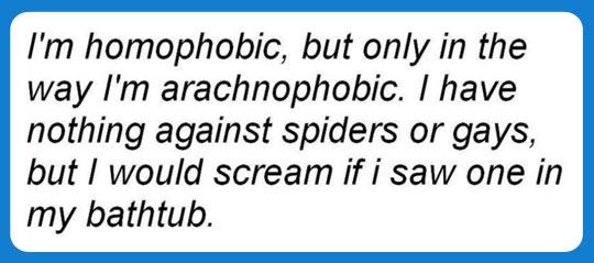 funny-gay-spider-fear-scream