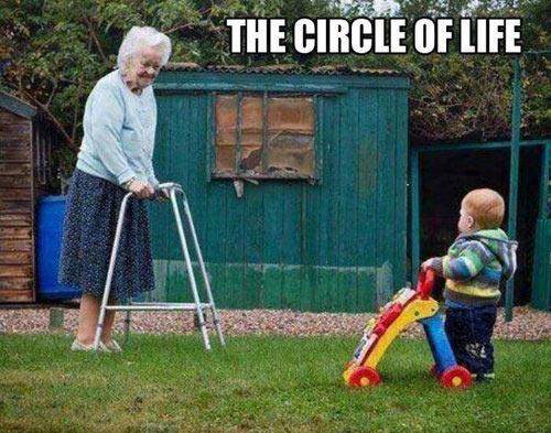 The real circle of life…