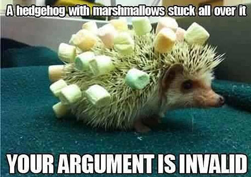 No argument is valid here…