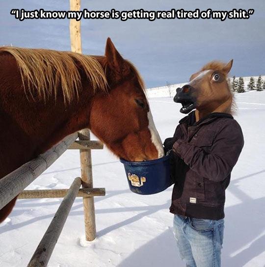 Quit horsing around…