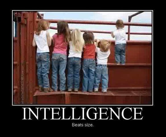 funny-intelligence-beats-size-kids