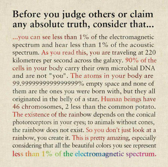 funny-judge-truth-electromagnetic-spectrum