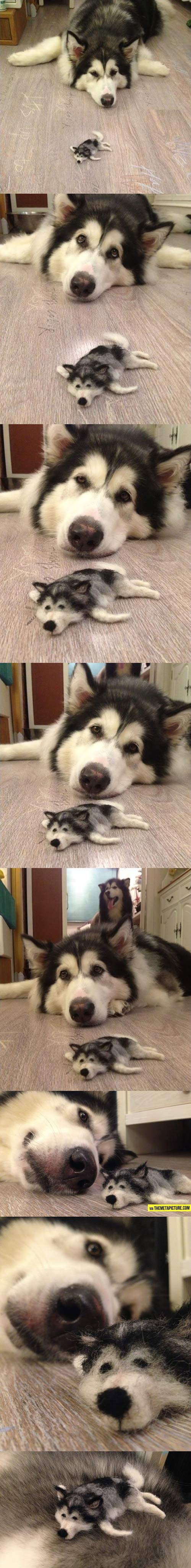 funny-lazy-dog-fur-toy