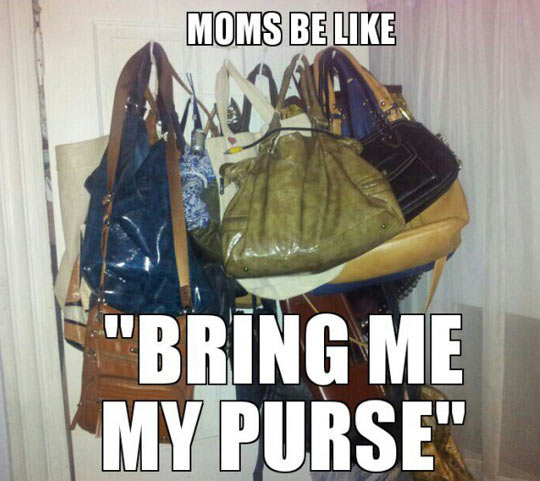 funny-mom-purse-bring