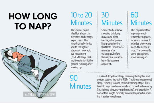 How long to nap…