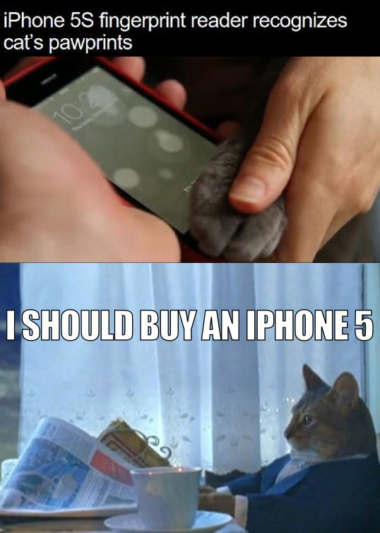 funny-new-iPhone-S-paw-recognition
