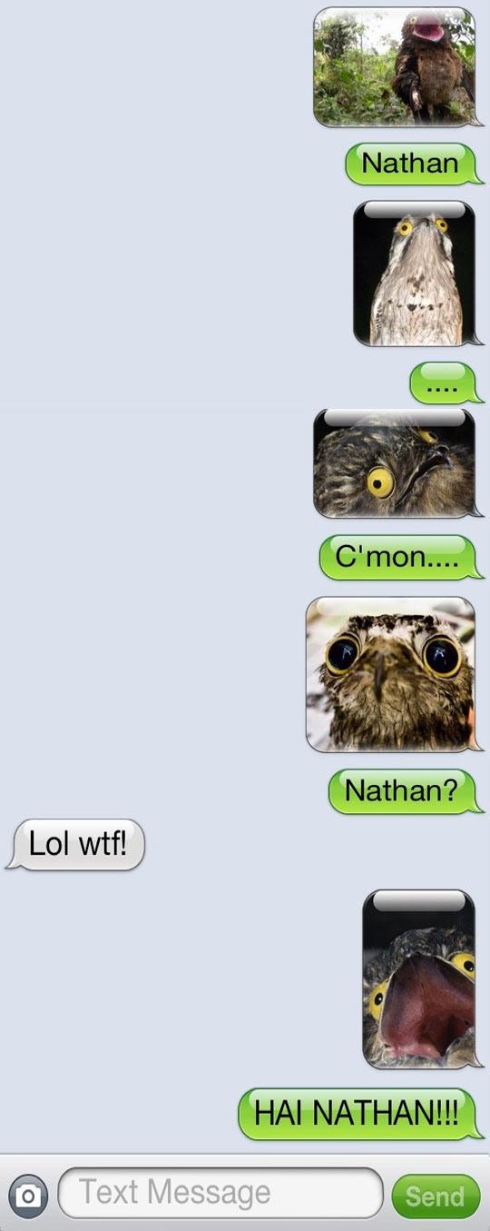 Nathan has really creepy friends...