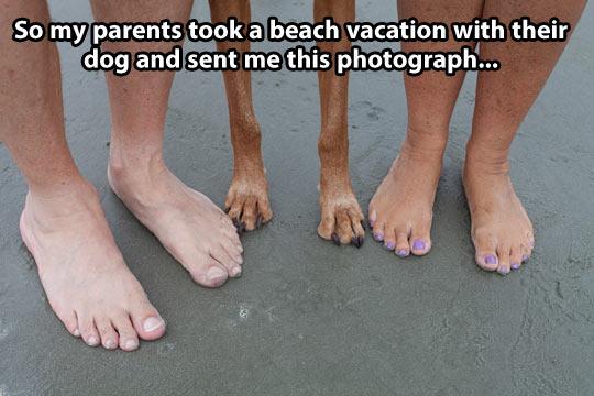 Vacation memories…