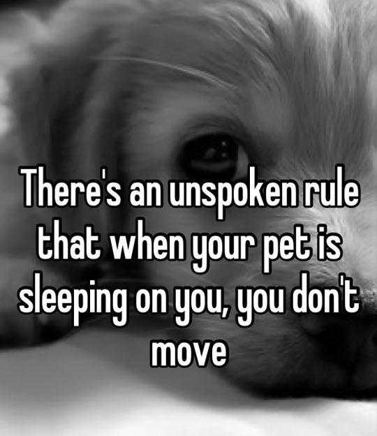 Unspoken rule…