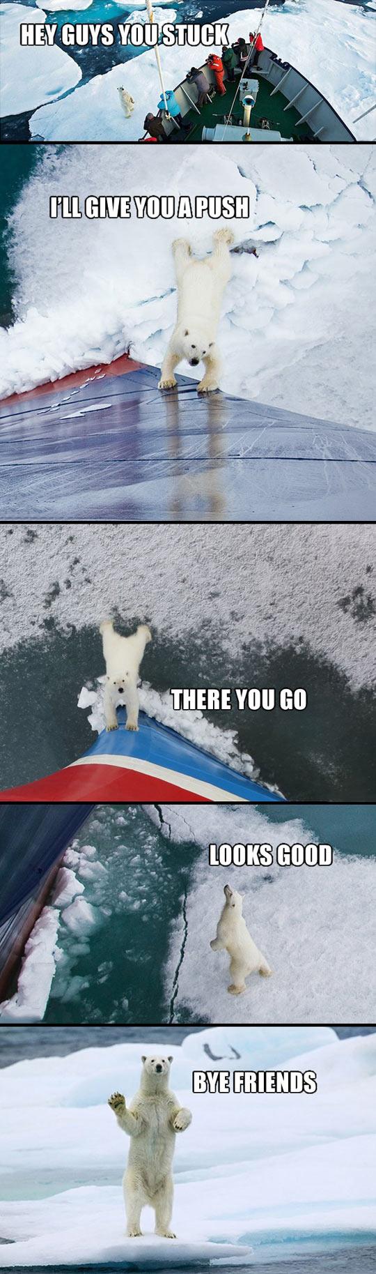 Good guy polar bear…