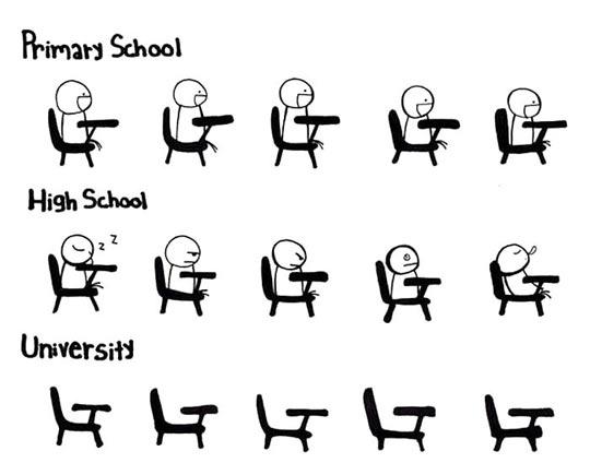 Primary School vs. High School vs. University…