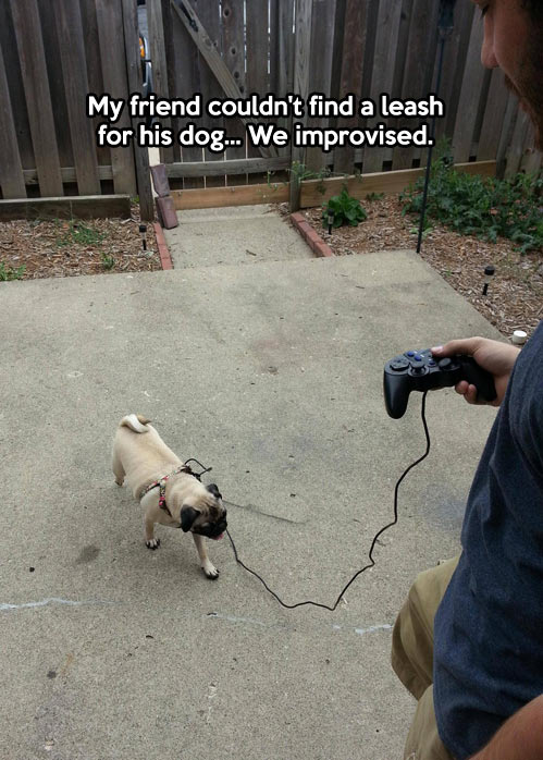 funny-pug-PlayStation-controller