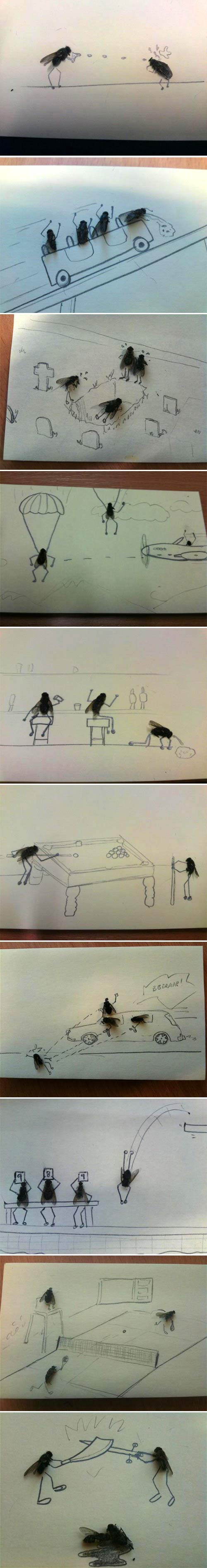funny-real-fly-drawing-cartoon