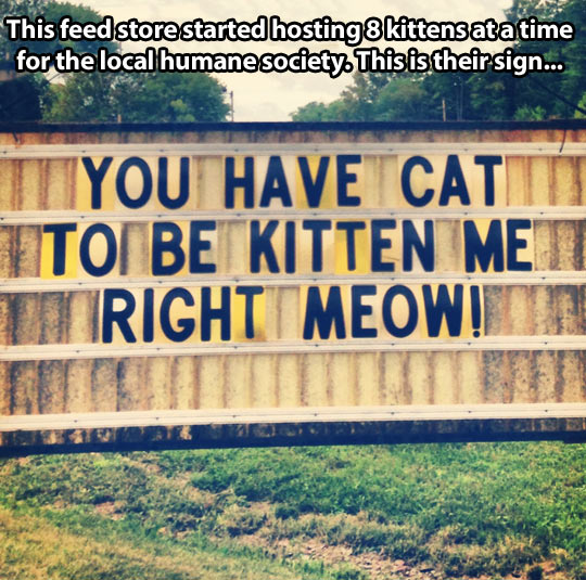 Right meow…