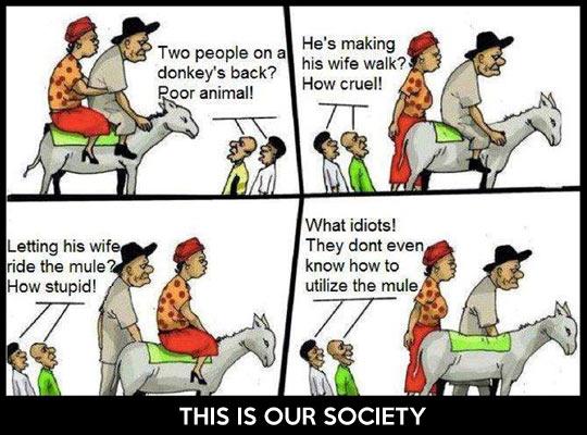 funny-society-donkey-metaphor