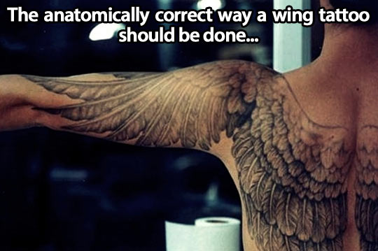 funny-tattoo-wing-anatomically
