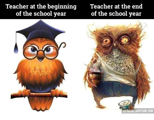 The life of a high school teacher…