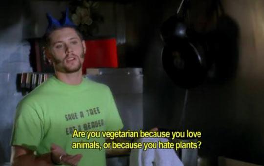 funny-vegetarian-love-animal-hate