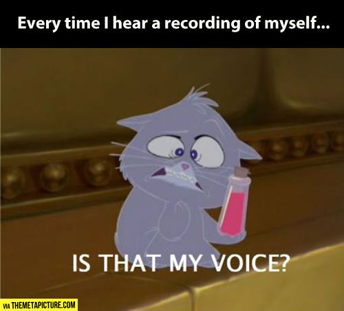 Every time I hear a recording of my voice…