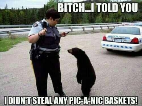 Damn authorities are unbearable!