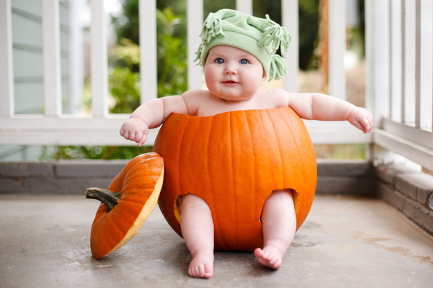 Expectation - Babies in pumpkins.