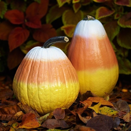 Expectation - Candy corn pumpkins.