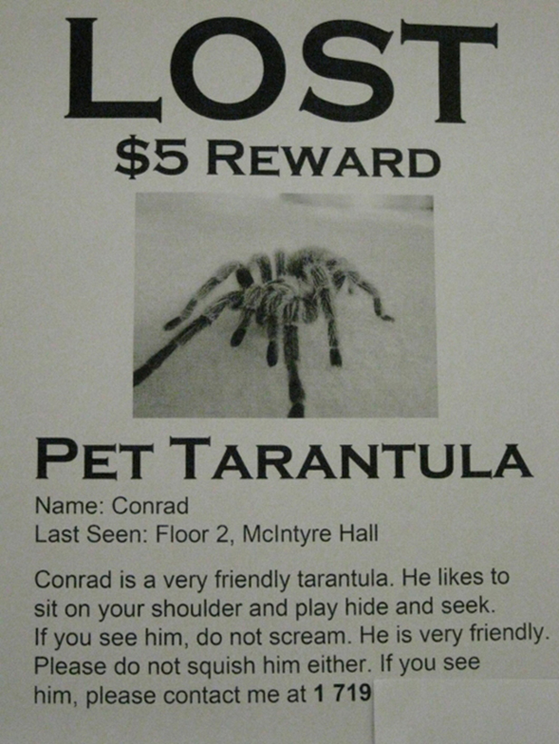 Funny Lost Pet Signs — 16