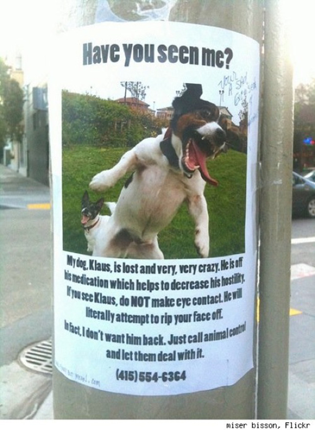 Funny Lost Pet Signs — 9