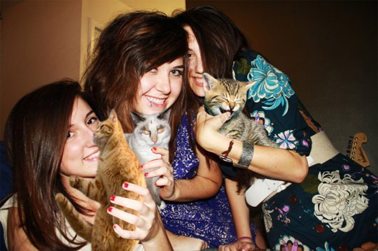 Replacing Booze With Kitties — 3