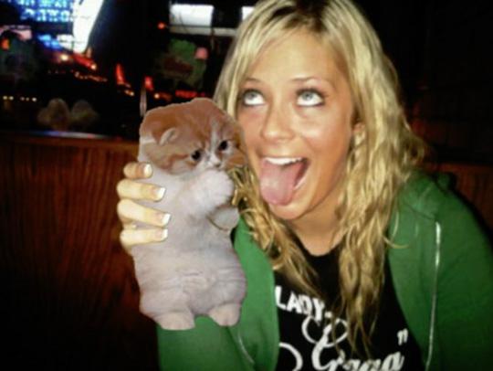 Replacing Booze With Kitties — 6