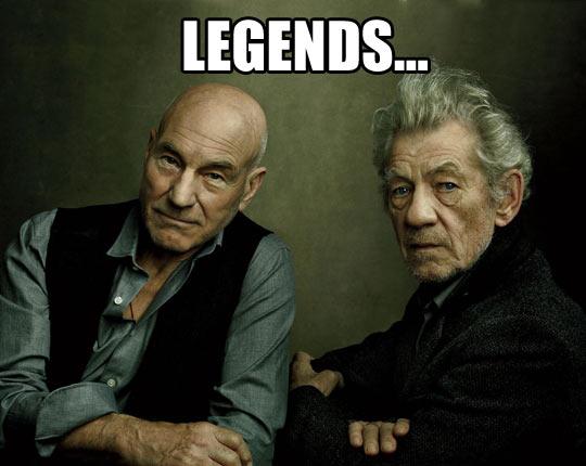 cool-Ian-Mckellen-Patrick-Stewart-legends