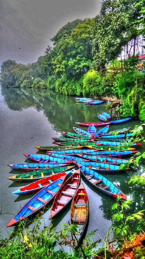 cool-canoe-colors-jungle