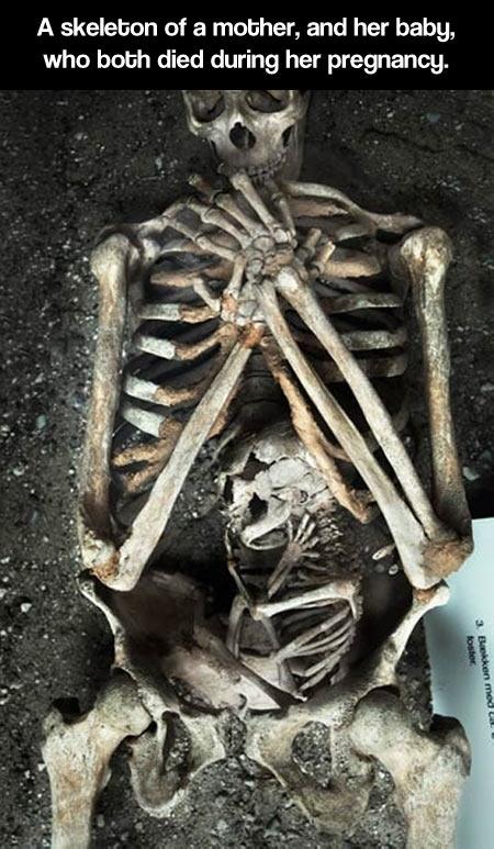 cool-skeleton-mother-baby-inside