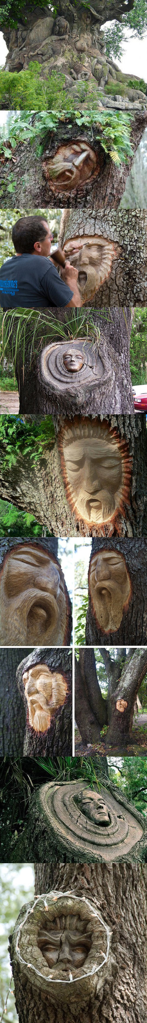 cool-tree-spirit-carving-faces