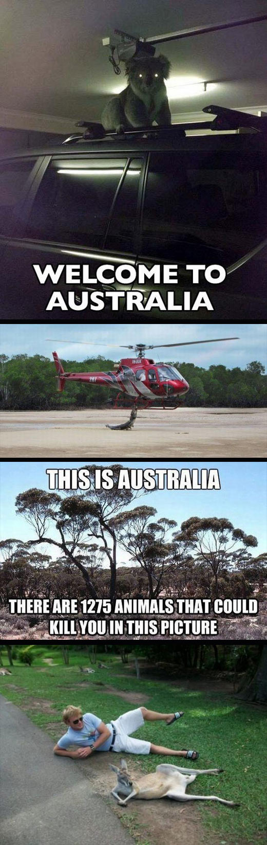 Reasons why Australia is a little different…