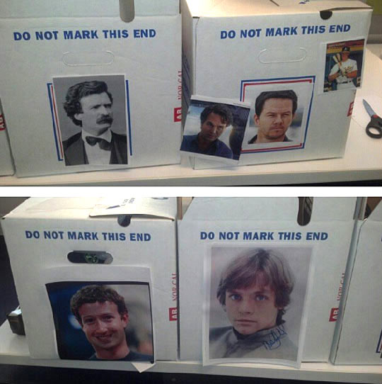funny-Mark-end-boxes