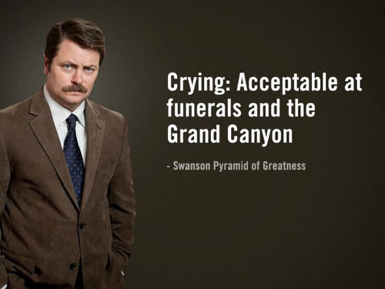 Swanson on emotions…