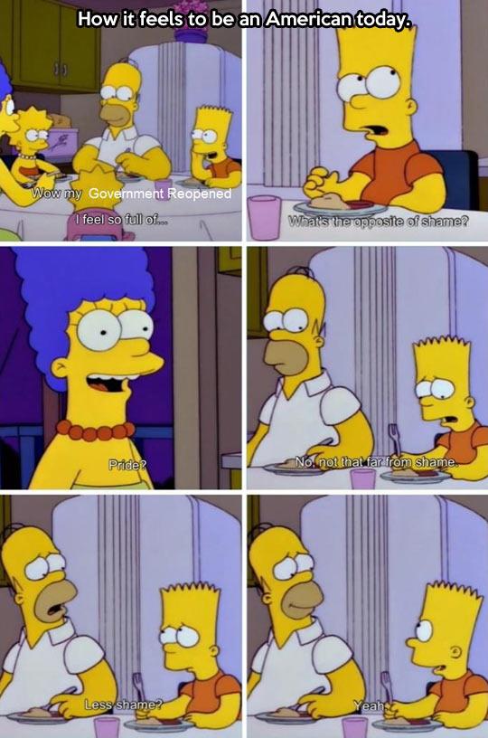 funny-Simpson-Government-shame-pride