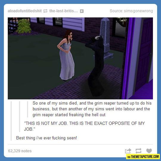 funny-Sims-conundrum-grim-reaper