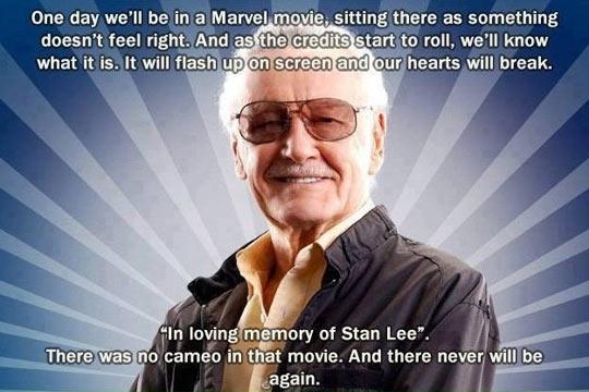funny-Stan-Lee-screen-credits-cameo