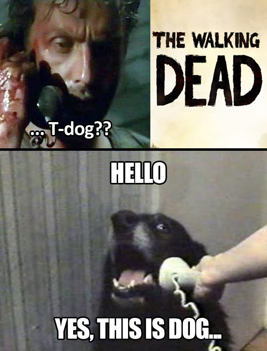 Hello, T-Dog?