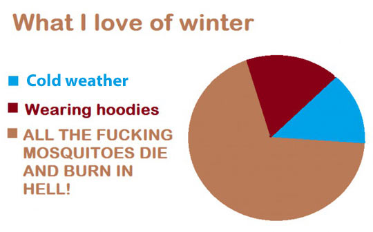 funny-Winter-chart-mosquitoes-weather