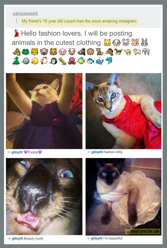 The most amazing instagram account…