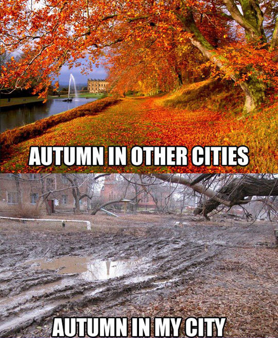 My autumns are not as glamorous…
